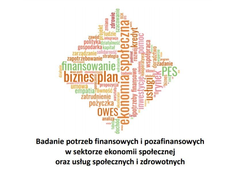 Badanie potrzeb finansowych i pozafinansowych w sektorze ekonomii społecznej oraz usług społecznych i zdrowotnych